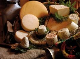 Fior di Bosco, maso eco-sostenibile in Trentino Alto Adige