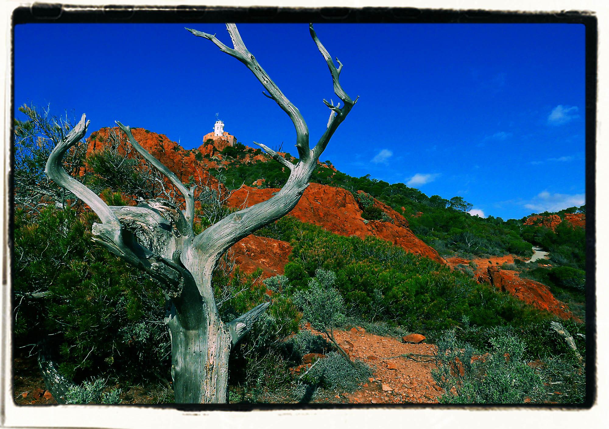 Esterel - Cap Dramont, Costa Azzurra