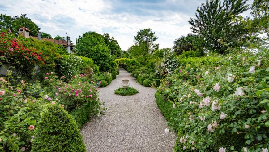 Ca' delle Rose: una favola nella campagna Veneta