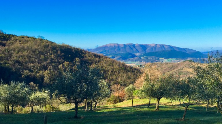 Digital detox a Podere Vallescura Off The Grid