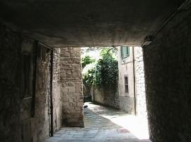 Romagna Savio Natura