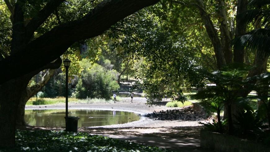 Hyde Park Londra Green