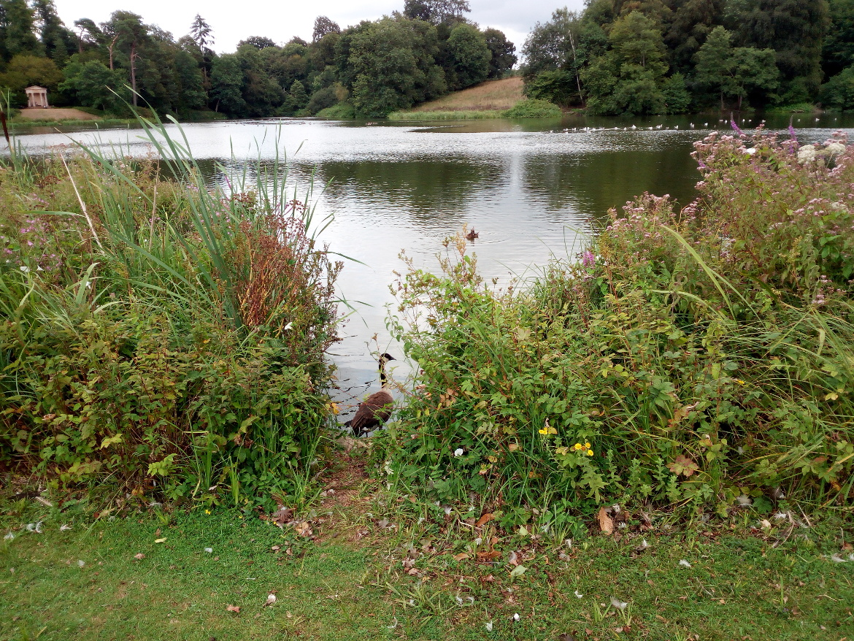 Il lago di Bowood e il tempio dorico