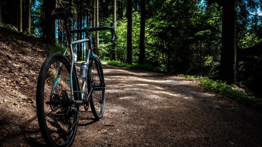 Bike Natura Savio