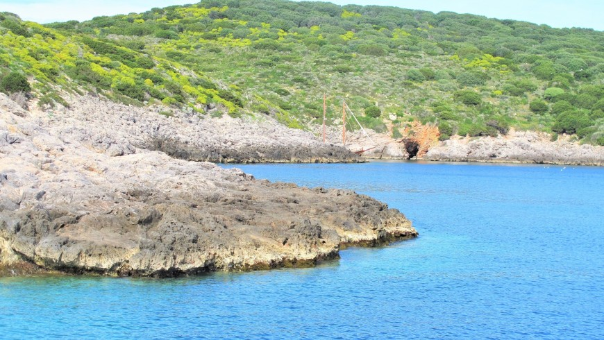 Giannutri, rocce e macchia mediterranea