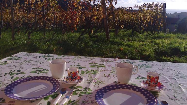 Casa ecologica per un weekend tra le vignein Liguria