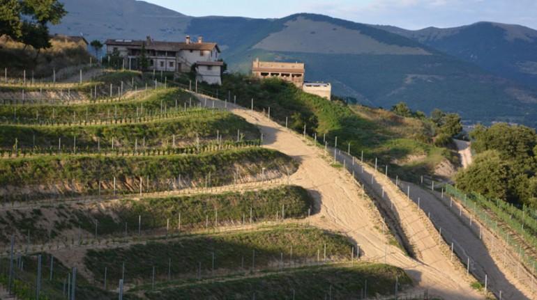 Agriturismo con orti, frutteti e vigne in Umbria