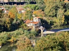 La Martellina, BnB eco-friendly e immerso nel verde, sull'Arno