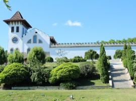 Castello di Purcari- turismo del vino