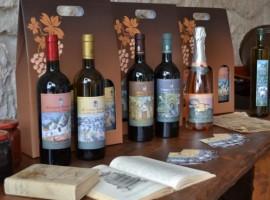 Una masseria con trullo in Puglia, circondata da vigne