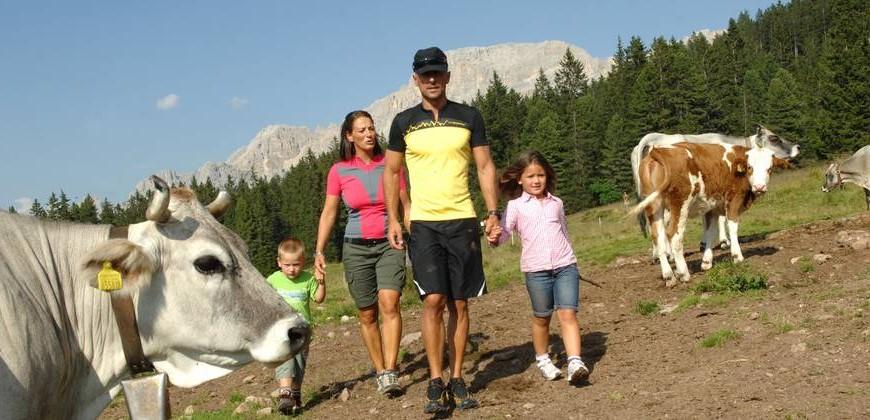 Un Family Hotel tra le Dolomiti del Trentino