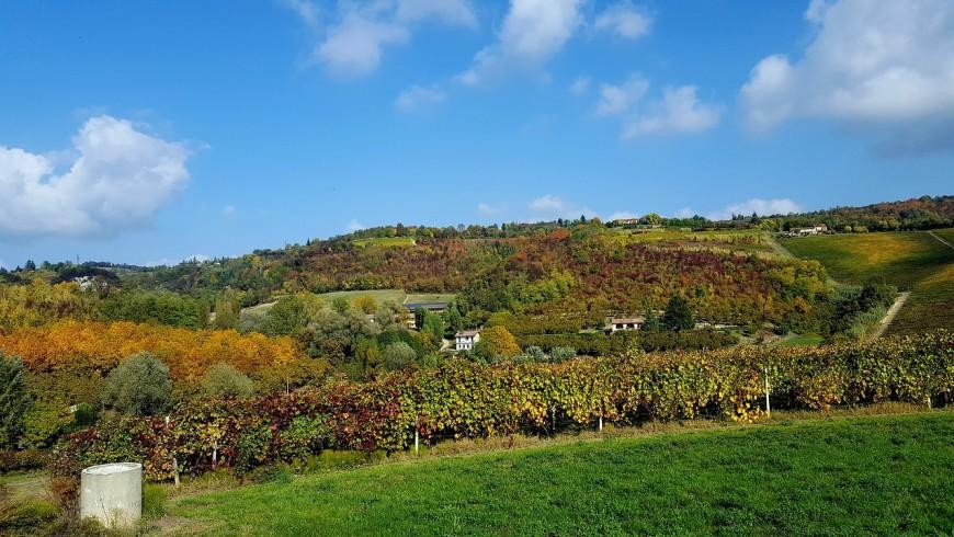 Tra le colline del Monferrato