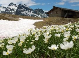 Rifugio sogno di berdzè, eco-ospitalità, vivere green