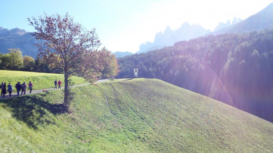 Itinerario a piedi nel paesaggio incantato nella Val di Funes