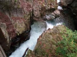 Le cascate di Stanghe, Racines