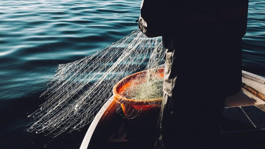 Pescare al chiaro di luna nella Riviera delle Palme