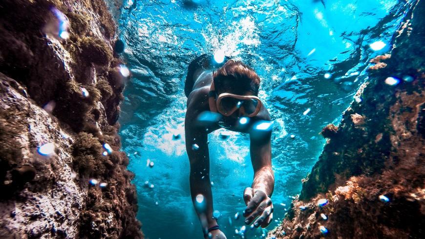 Immersioni nella Riviera delle Palme