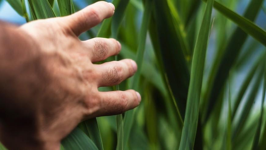 5 storie ispiratrici per cambiare vita in chiave green