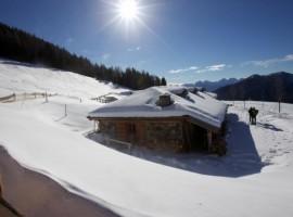 Malga Cere: Il tuo inverno tra lo spettacolo delle Dolomiti