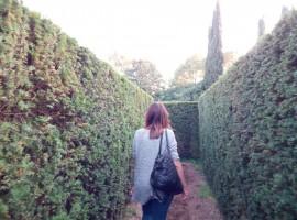 Camminare nel Labirinto del Giardino Sigurtà