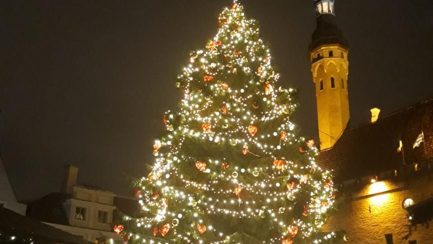 Estonia, Piazza del Municipio, Tallin