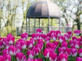 Tulipanomania a Parco Sigurtà, Valeggio sul Mincio