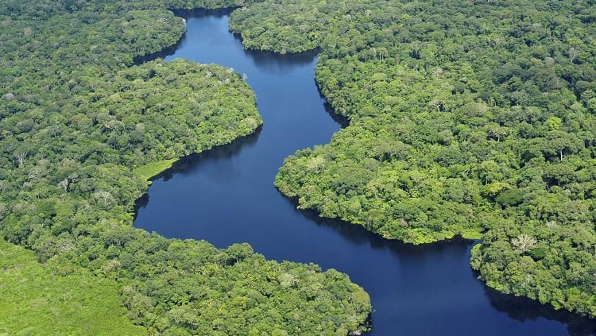 Vista aerea della Foresta Amazzonica