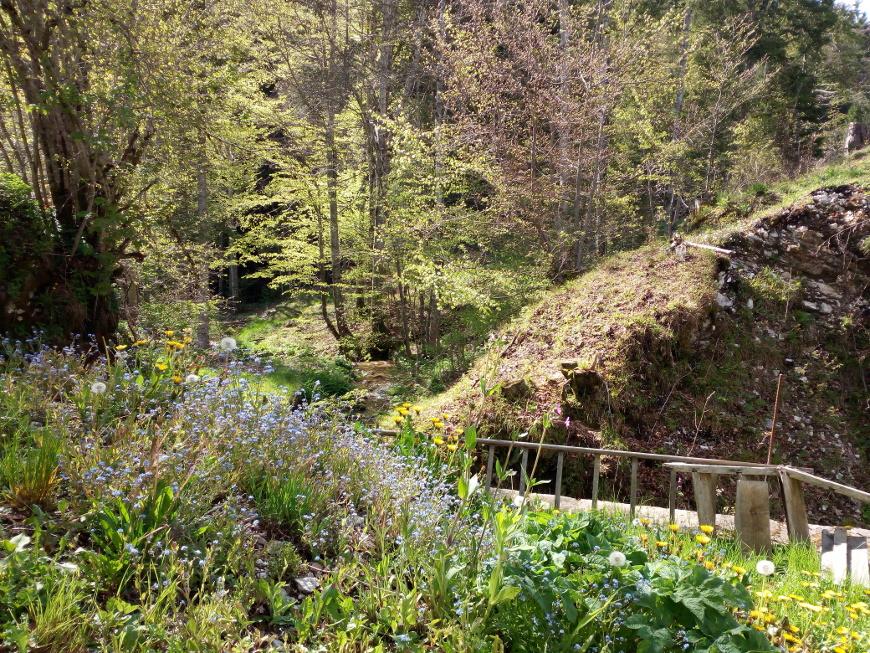 Sentiero dell'Acqua da Carbonare a Cueli Liberi, Alpe Cimbra