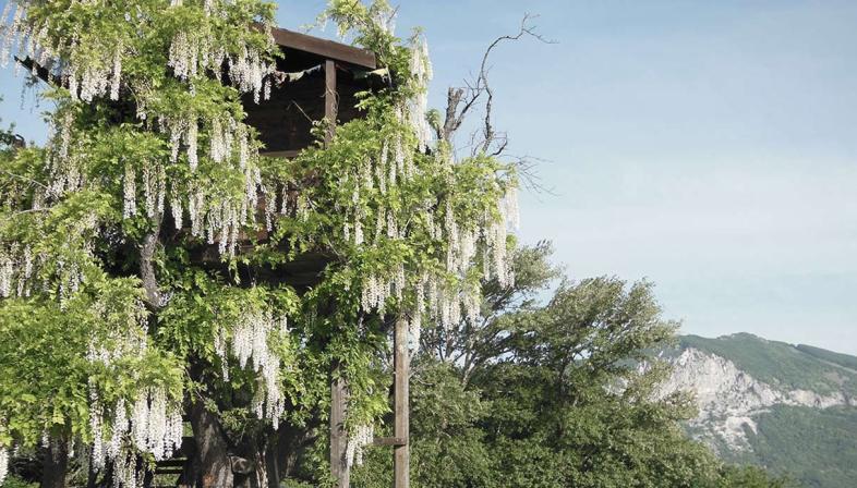 casa sull'albero Laperegina, Italia