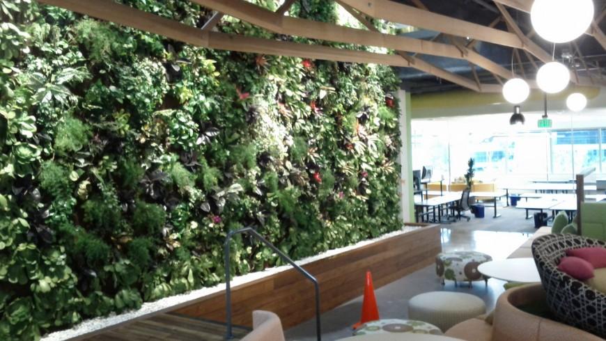 Parete verde con acqua che scorre in un ufficio di Palo Alto, California