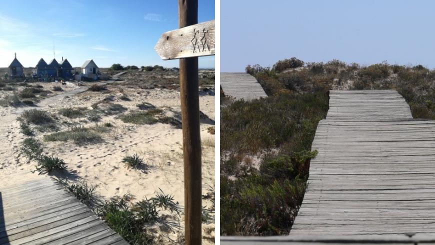La passerella in legno per percorrere l'isola