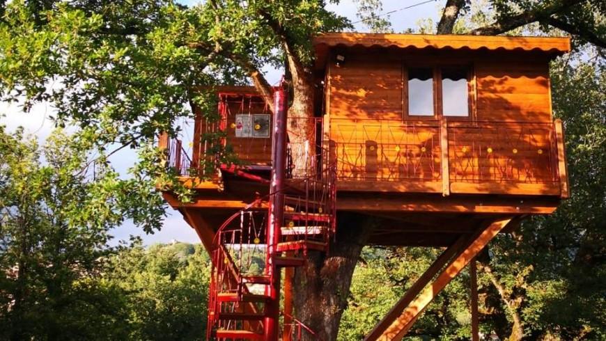 La casa sull albero vista dall esterno