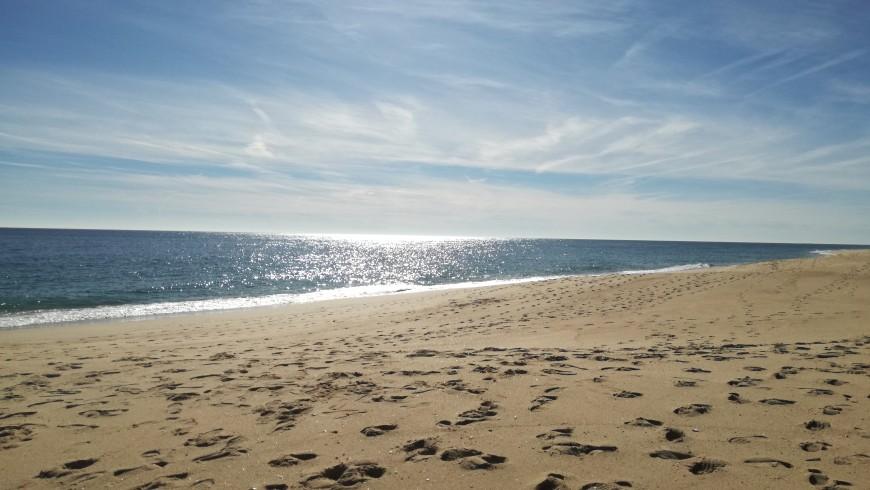 Spiaggia e oceano