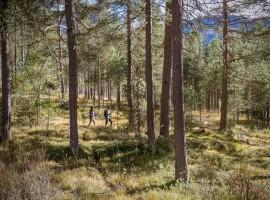 Boschi per camminare nella natura incontaminata vicino a Les Gomines