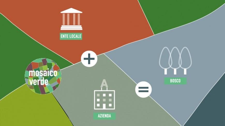 progetto mosaico verde, combattere la co2 con gli alberi e i boschi urbani