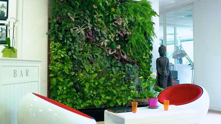 Parete vegetale in uno spazio interno