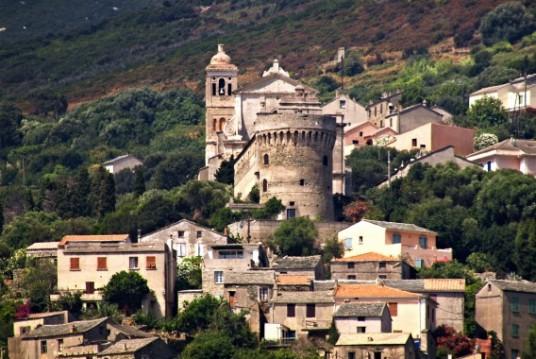 Foto del paese di Rogliano, circondato da alberi. Spiccano le case antiche del centro storico, una torre in pietra e un campanile.