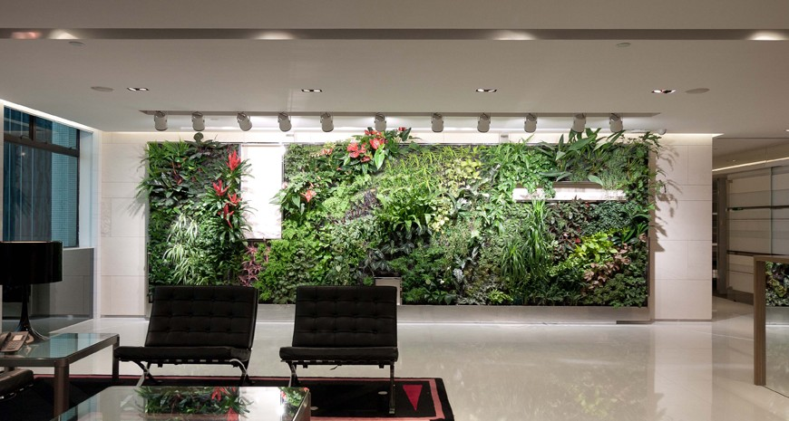 Office decorated with plants