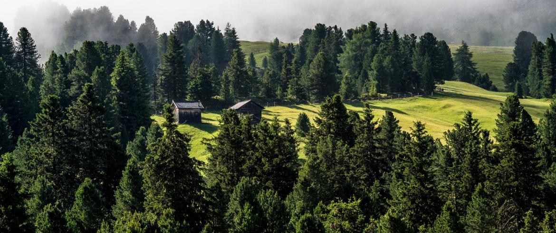 Natural Living tra le Dolomiti