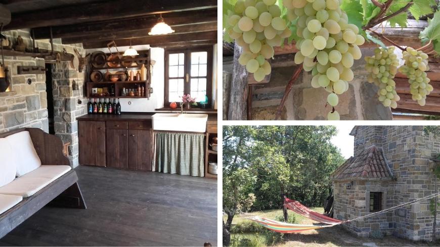 istria autentica, cucina, uva e amache in giardino