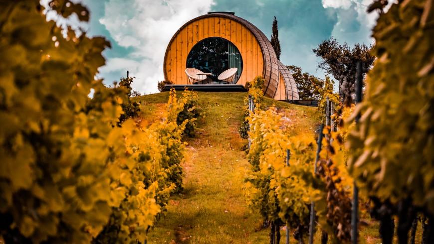 Vigneti e hotel botte nella regione dell'Alto Douro: la viticoltura portoghese è all'avanguardia nell'utilizzo di tecnologie biologiche ed ecosostenibili