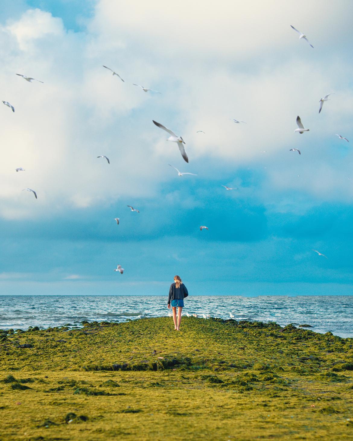 turismo vicino alla natura. Ragazza che cammina a piedi nudi su un prato vicino al mare
