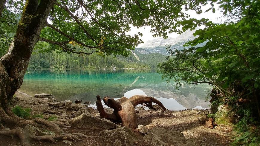 Lago Tovel, Parco Naturale Adamello Brenta