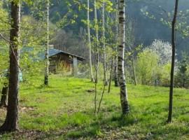 Casa Payer nel Bosco, Piemonte
