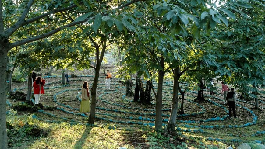 Il bosco Sacro di Damanhur