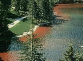 Lago di tovel con acua rossa vicino alla riva
