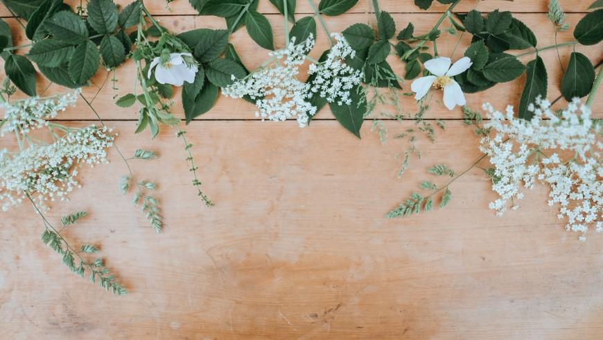 tavolo con fiori bianchi - tema del tuo blog di viaggio sostenibile