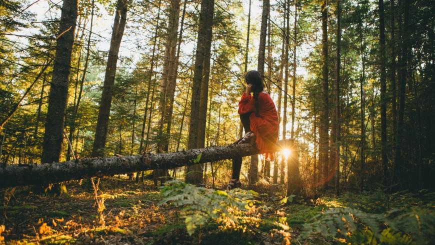 ragazza seduta su un tronco nella foresta