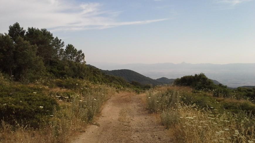 Discesa Monte Arci, Sardegna Centrale, foto di Wikimedia