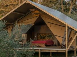 Dormire sotto le stelle in una tenda di lusso nell'agriturismo biologico Sant'Egle, Toscana